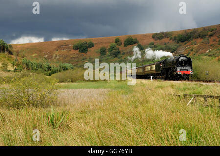 Sunshine and storm clouds over the North Yorks moors as a steam train passes. - Stock Photo