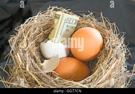 Is your nest egg getting a little low? - Stock Photo