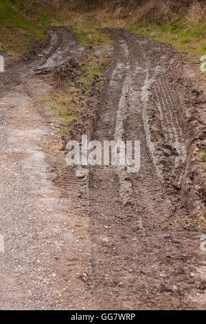tyre tread mark in mud on the side of a road - Stock Photo