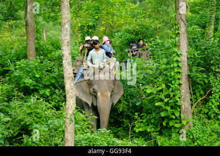 CHITWAN,NP-CIRCA AUGUST 2012 - tourists doing safari on elephants back, circa August 2012 at Chitwan. - Stock Photo
