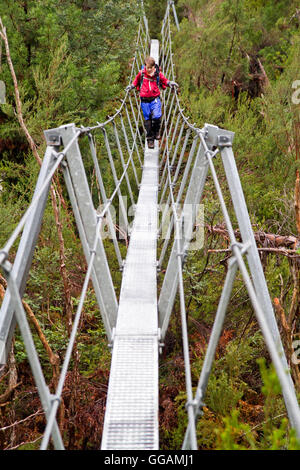 Boy crossing a suspension bridge on the Overland Track - Stock Photo