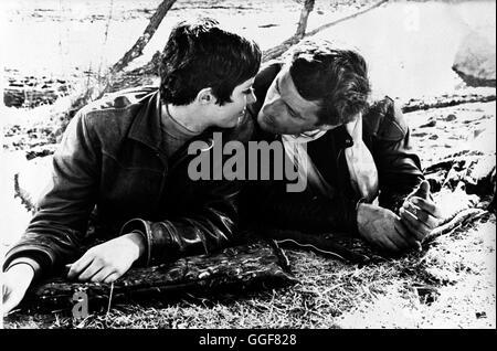 REBELLEN IN LEDERJACKEN / Devil's Angels USA 1967 / Daniel Haller Lynn (BEVERLY ADAMS), Cody (JOHN CASSAVETES) Regie: - Stock Photo