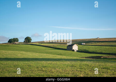 Early-morning Teesdale landscape - Stock Photo