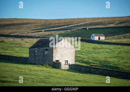 Teesdale, near Forest-in-Teesdale - Stock Photo