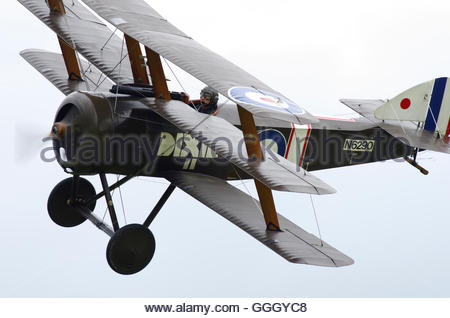 Shuttleworth Collection Sopwith Triplane flying at Old Warden - Stock Photo