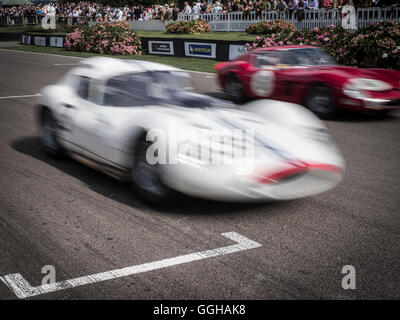 1962 Maserati Tipo 151, Goodwood Revival 2014, Racing Sport, Classic Car, Goodwood, Chichester, Sussex, England, - Stock Photo
