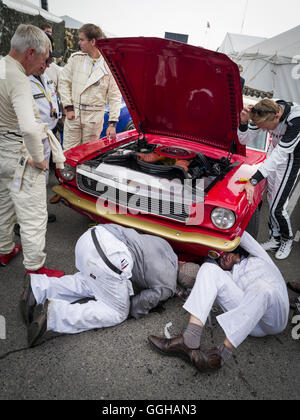 Mechanics working on a Ford Mustang, Goodwood Revival 2014, Racing Sport, Classic Car, Goodwood, Chichester, Sussex, - Stock Photo