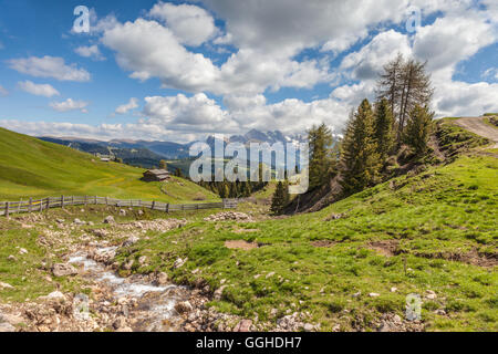geography / travel, Italy, South Tyrol, mountain stream on the Seiser mountain pasture, Additional-Rights-Clearance - Stock Photo