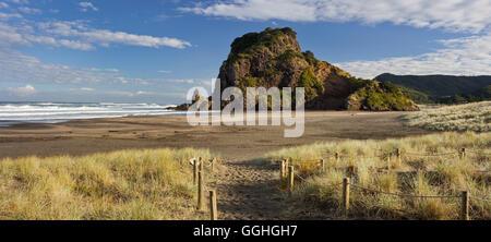 Lion Rock, Piha, Auckland, North Island, New Zealand - Stock Photo