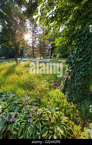 Flower beds, Doblhoff park, Baden near Vienna, Lower Austria, Austria - Stock Photo