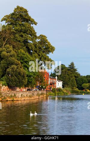 Quay along the River Exe, Exeter, Devon, England, Great Britain
