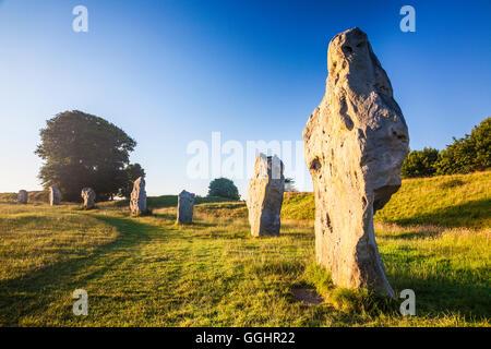 Sarsen stones at sunrise in Avebury, Wiltshire. - Stock Photo