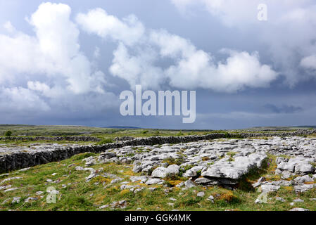 In the Burren, Clare, West coast, Ireland - Stock Photo