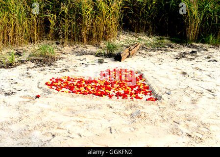 Heart made from flowers in Baltic sea sand - Stock Photo