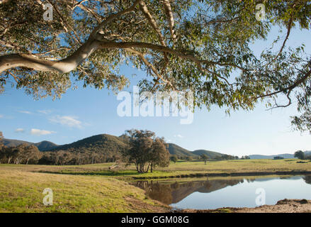 Murray Valley, Victoria - Stock Photo