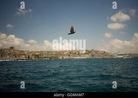 A pigeon flies over Golden Horn at the Bosphorus in Istanbul, Turkey. © Jordi Boixareu - Stock Photo