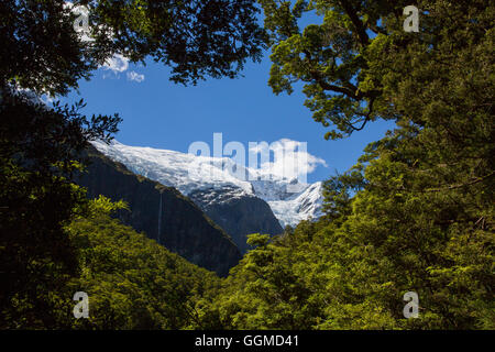 Rob Roy Glacier, view of the Rob Roy Glacier Trek, Mount Aspiring National Park, South Island, New Zealand - Stock Photo