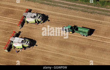 aerial view of 2 combine harvesters and a tractor with trailer, England, UK - Stock Photo