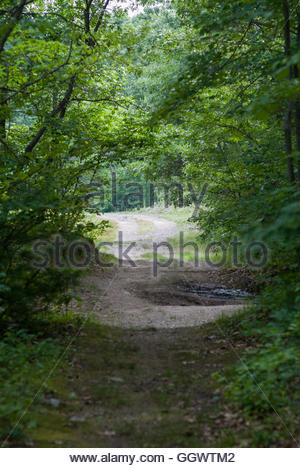Washed out dirt road through woods makes for slow going - Stock Photo