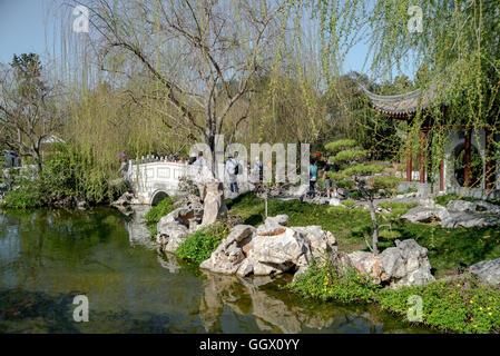 Beautiful Chinese Gardens - Stock Photo