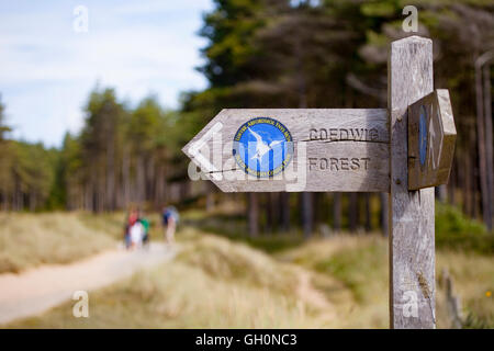 A woodland sign showing direction to Newborough Warren Forest located adjacent to the beach and forest, Newborough, - Stock Photo