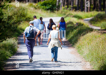Walkers enjoying a summers walk through Newborough Warren Forest on the west coast of Anglesey, Wales, UK - Stock Photo