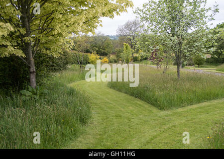 Mowed paths through a garden with grass and trees with long grass borders - Stock Photo