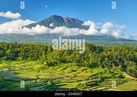 Gunung Agung Volcano and rice terraces field, Bali, Indonesia - Stock Photo