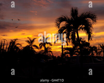 Dramatic sunset on a pacific coast beach. Puerto Vallarta, Jalisco. Mexico - Stock Photo