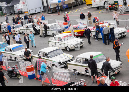 Ford Lotus Cortina saloon cars lined up in the paddock, 2016 Silverstone Classic event, England, UK - Stock Photo