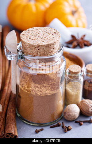 Pumpkin pie spice in a glass jar with ingredients - Stock Photo