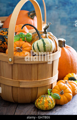 Variety of colorful decorative pumpkins in a basket - Stock Photo