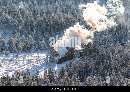 geography / travel, Germany, Saxony-Anhalt, Harz National Park, Harz narrow gauge railway in the winter, Additional - Stock Photo