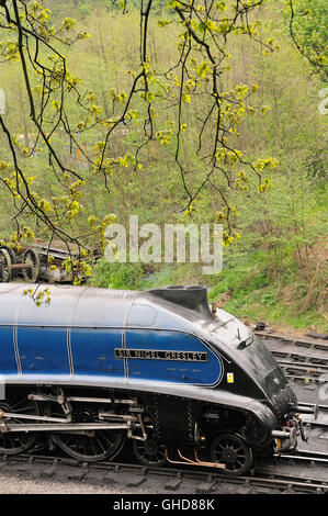 Preserved class A4 Pacific steam locomotive 'Sir Nigel Gresley' at Grosmont shed. - Stock Photo