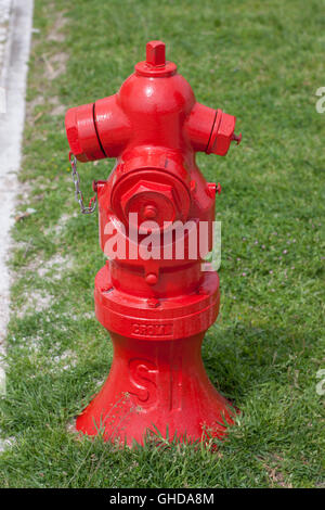 bright red fire hydrant against green grass - Stock Photo