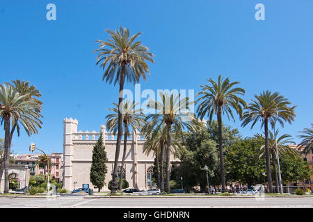 La Llotja building and palm trees from the Paseo Maritimo in Palma de Mallorca, Balearic islands, Spain on April - Stock Photo