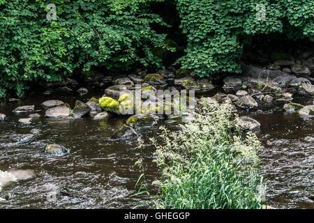River Almond, Livingston, West Lothian, Scotland - Stock Photo