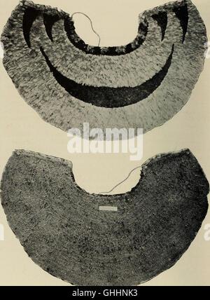 Memoirs of the Bernice Pauahi Bishop Museum (1918) - Stock Photo