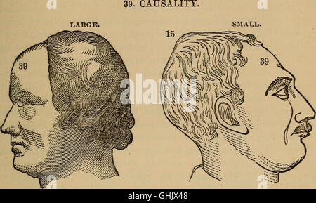 The practical phrenologist and recorder and delineator of the character and talents of (blank), as marked by (blank) - Stock Photo
