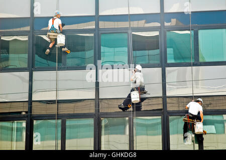 A group of three people cleaning the windows while tied to a rope - Stock Photo
