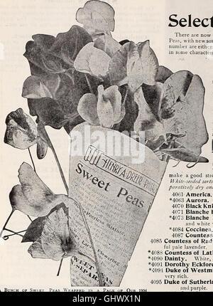 Dreer's 1907 garden book (1907) - Stock Photo