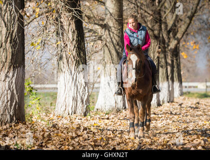 Young girl riding horses through the forest - Stock Photo