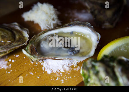 Price Edward Island oysters served at St John's in Newfoundland and Labrador, Canada. - Stock Photo