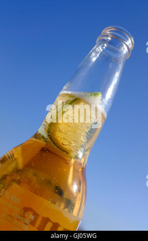 lime in spanish beer bottle - Stock Photo
