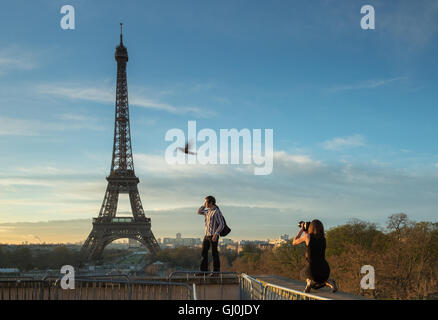 fashion photography and bird at the Palais de Chaillot with the Eiffel Tower as backdrop, Paris, France - Stock Photo