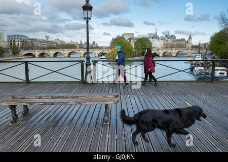 a dog with a stick on the Pont des Arts, Paris, France - Stock Photo