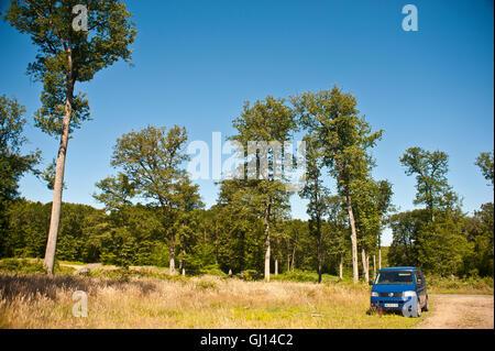 vw transporter T5 camper van parked in a woodland in central france - Stock Photo