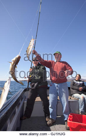 A man is helped to reel in his catch whilst fishing during a wildlife watching and fishing boat trip off the coast - Stock Photo