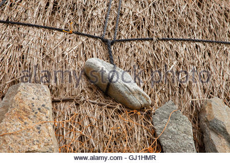 A detail of the rocks and netting holding down the thatch at the Gearrannan Blackhouse Village, Carloway, Isle of - Stock Photo