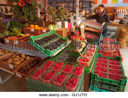 A shop assistant with a box of strawberries at the Strawberry Shop, near Scone, Perthshire, Scotland. - Stock Photo